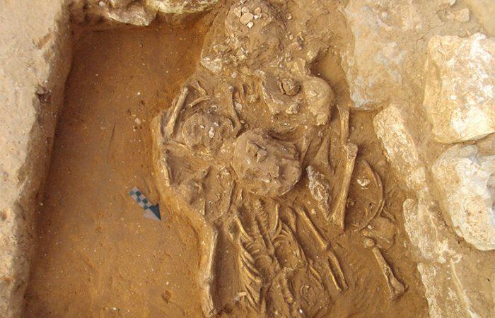 Arqueología terrestre - HUESOS